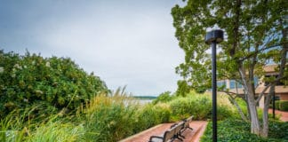 The Parks & Recreation Commission in Alexandria, Virginia acts in an advisory capacity to the City Council in all matters pertaining to parks, recreation, playgrounds, and entertainment. The Commission meets monthly except in August & December.